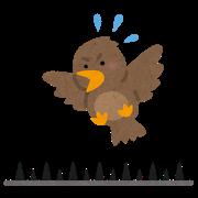 bird_toriyoke_toge.png