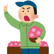 seri_flower.png